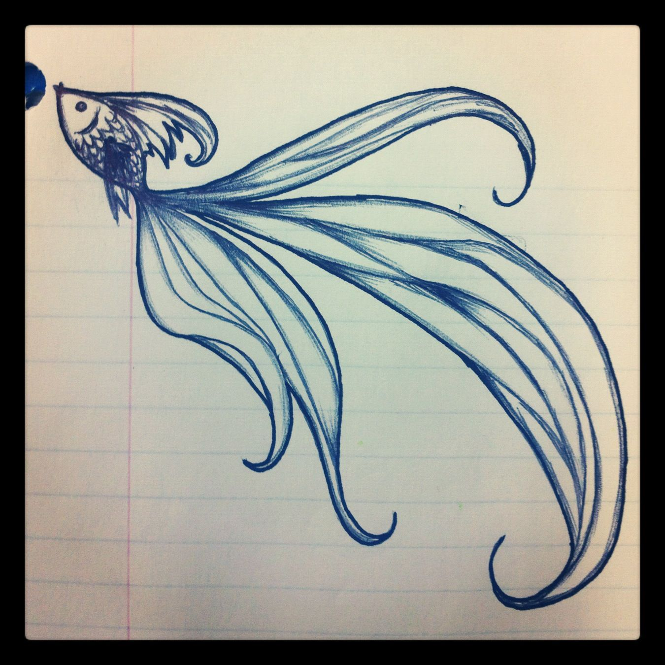 Beautiful fish drawing turn into tattoo maybe really for Simple beautiful drawings