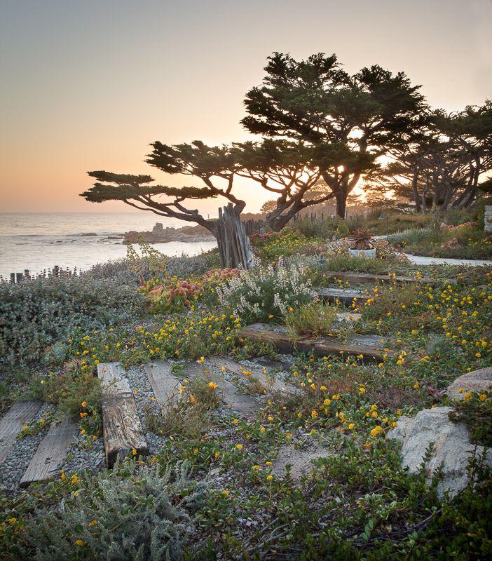 Urban Vegetable Gardening For Beginners: International Garden Landscapes Photographer Contest: The