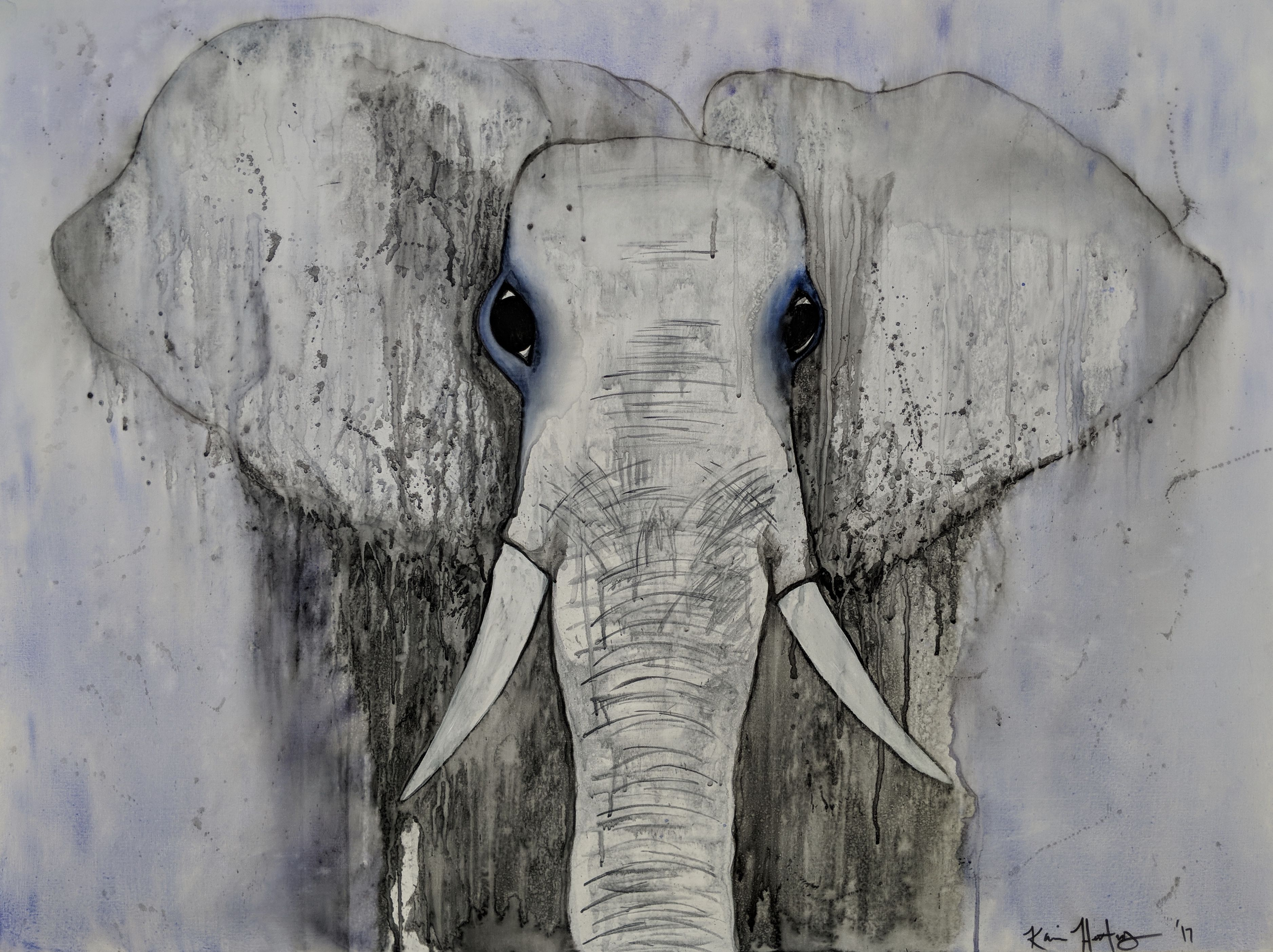 The Ghost Of An Elephant 40 X 40 Watercolor Treated Canvas