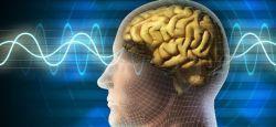 %100 beyin gücü