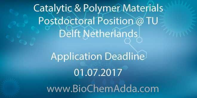 Catalytic & Polymer Materials Postdoctoral Position @ TU Delft