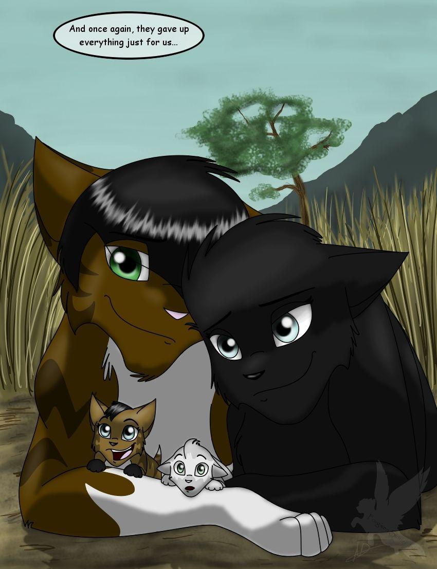 Family for adoption don't separate them (two kits white kit:amberkit brown kit: soilkit) (brown cat dad:darkfur black cat mom:nightwhisper