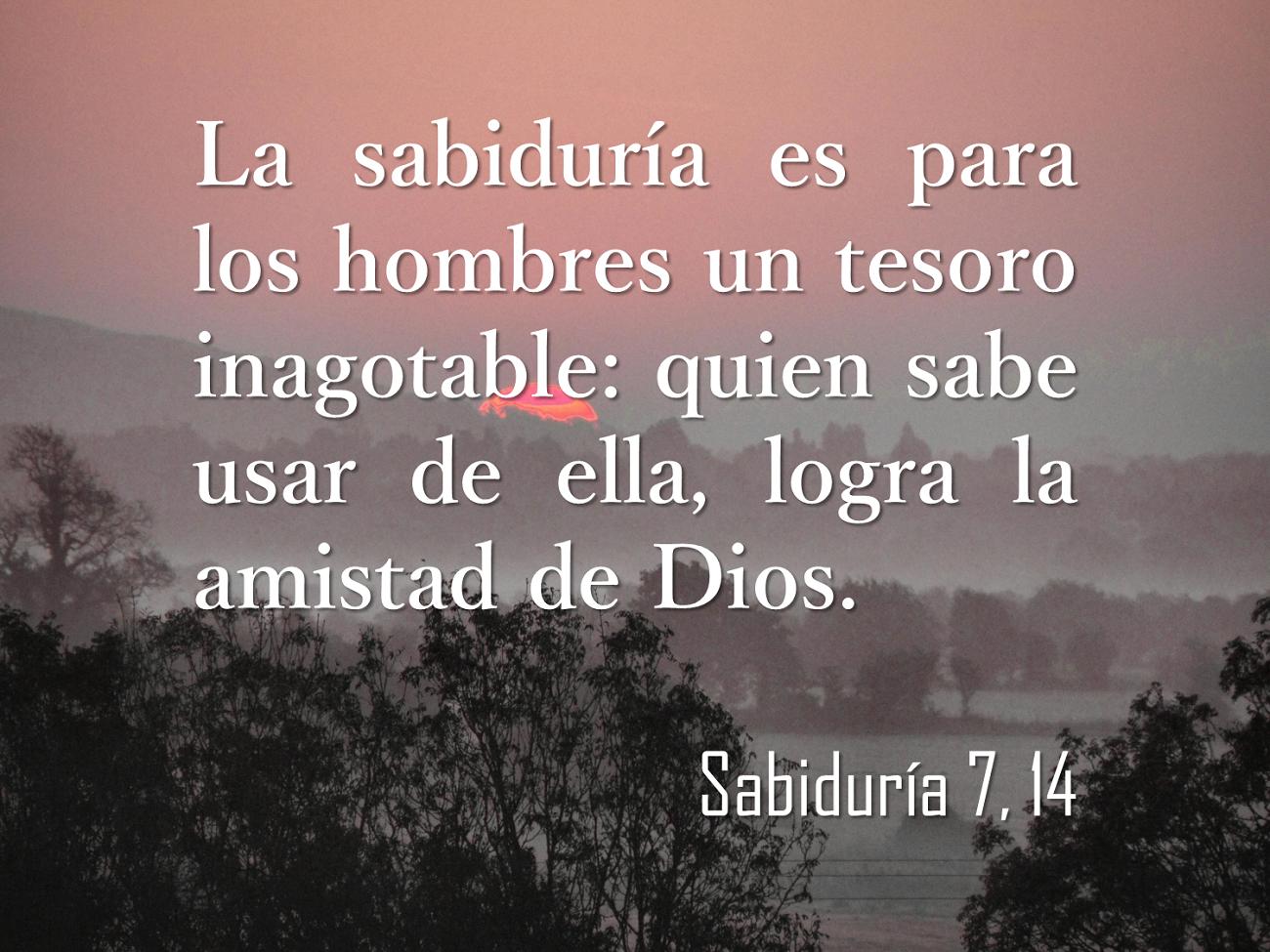 Versiculos De La Biblia De Animo: #biblia #versículos #sabiduría #Espiritualidad : La