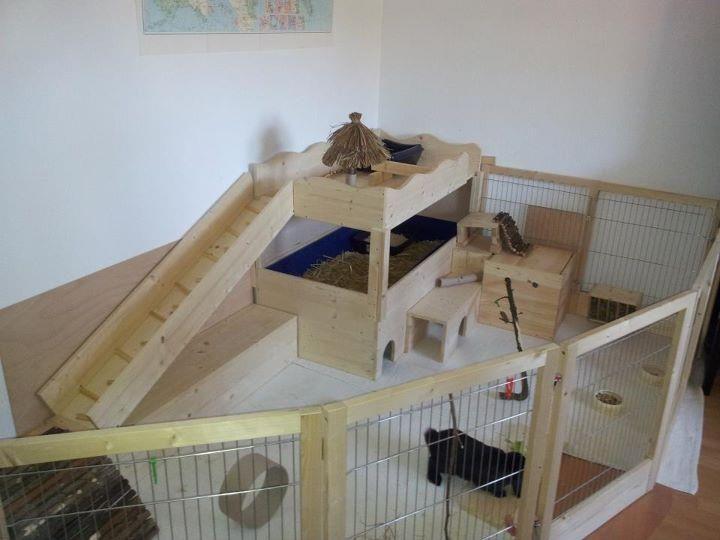 Rabbit condo cage Indoor BIG BUNNY /& CAT deluxe hutch pet pen w// carpeted floors
