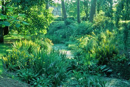 Cothay Manor, bog garden