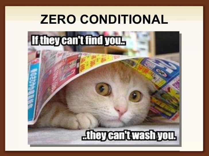 Zero Conditional động Vật