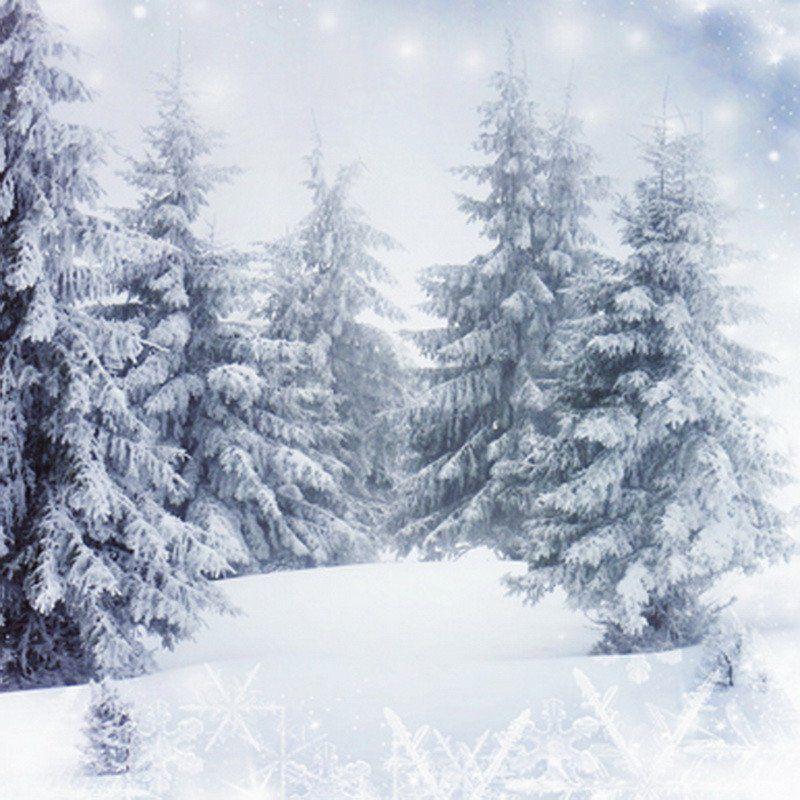 Kate Christmas Snow World Blue Glitter Photo White Floor Photography Backdrop Winter Backdrops Winter Background Christmas Photography Backdrops