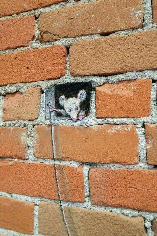 لو الليالي تذكر مافعلت كان صاح الجدار من اوجاعه