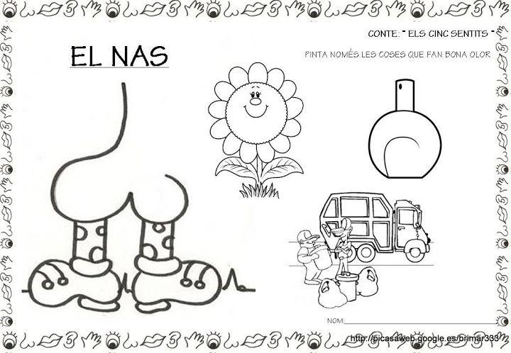 atividades sobre os 5 sentidos no jardim de infancia