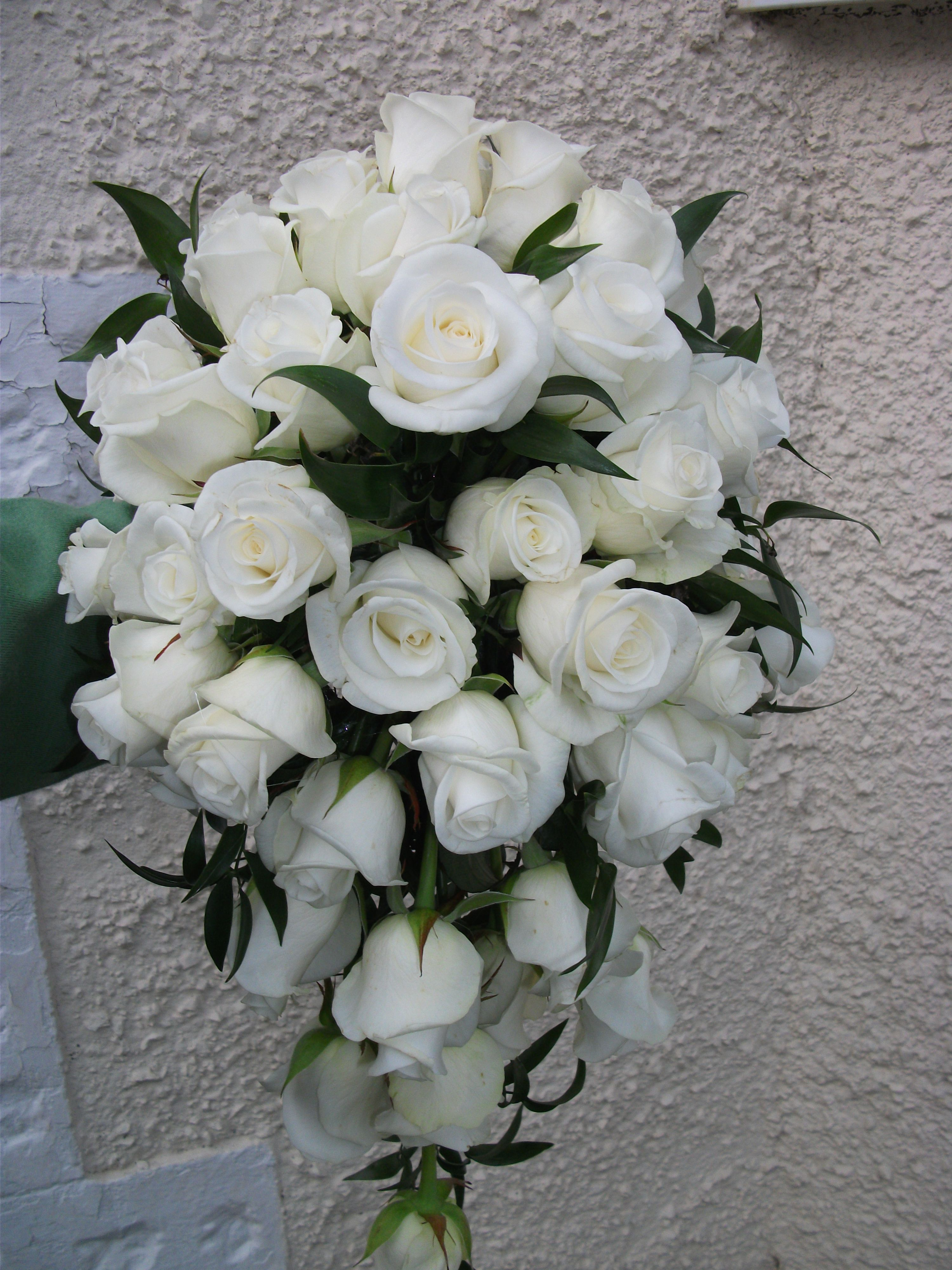 Teardrop bouquet of Akito roses and soft ruscus | Classic ivorys and ...
