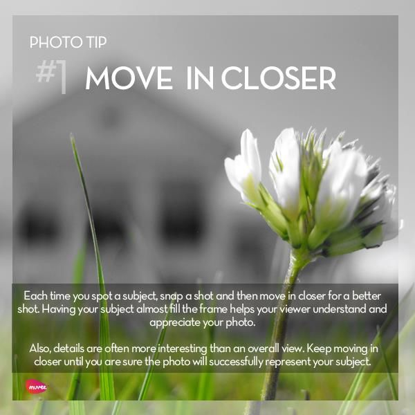#Photo #Tip Move in closer... @Candidman