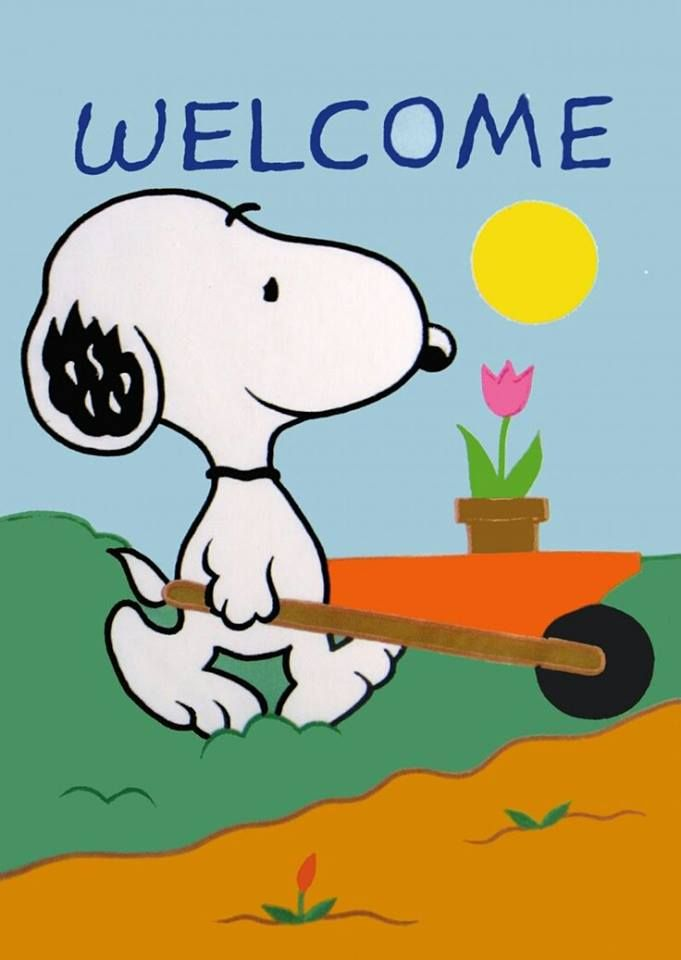 Snoopy Gardening   I Hang This Flag Every Spring!