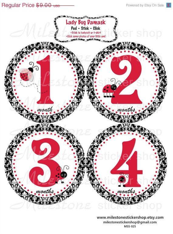 Lady Bug Damask Monthly Milestone Stickers by MilestoneStickerShop • $9.00
