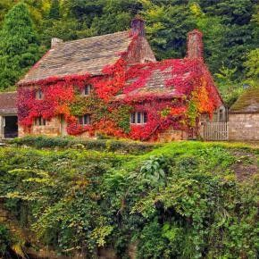 Enchanting fairy tale english cottages english cottages for Beautiful cottages pictures
