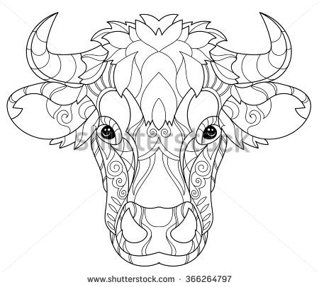 Coloring Pages Print Hand Drawn Doodle Outline Cow Head Decorated With