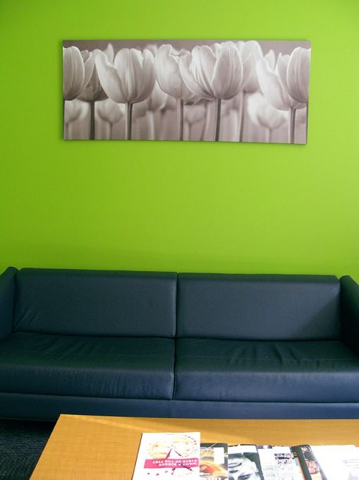 Dark Blue Couch Lime Green Walls Lime Green Walls Living Room Green Green Walls Living Room