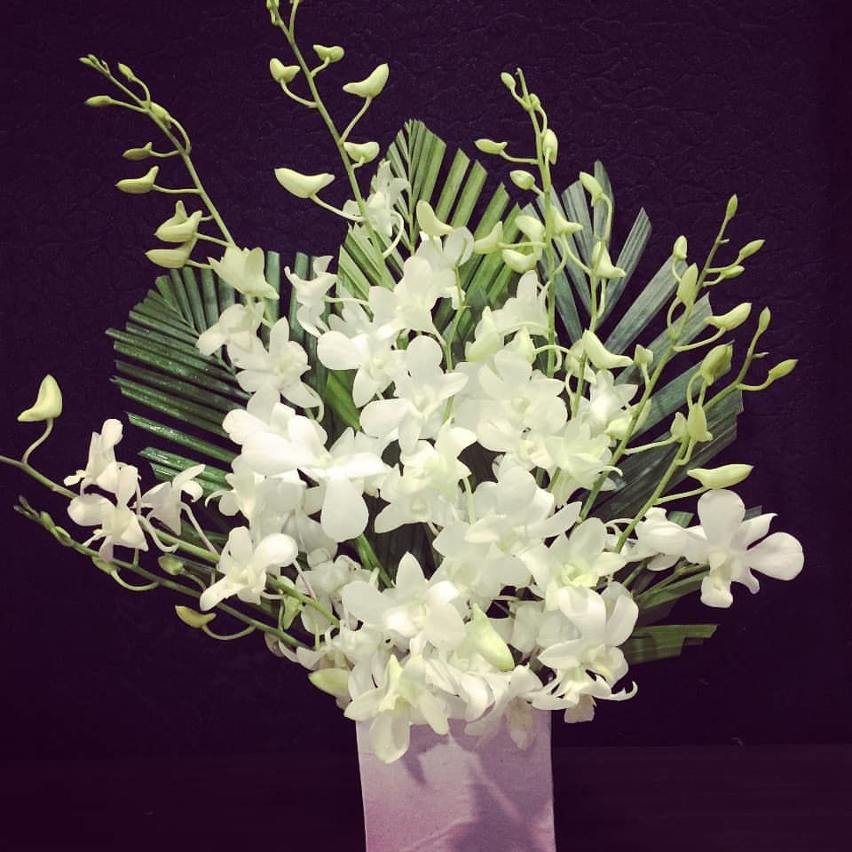 White orchids arrangement in a white base delivered to T
