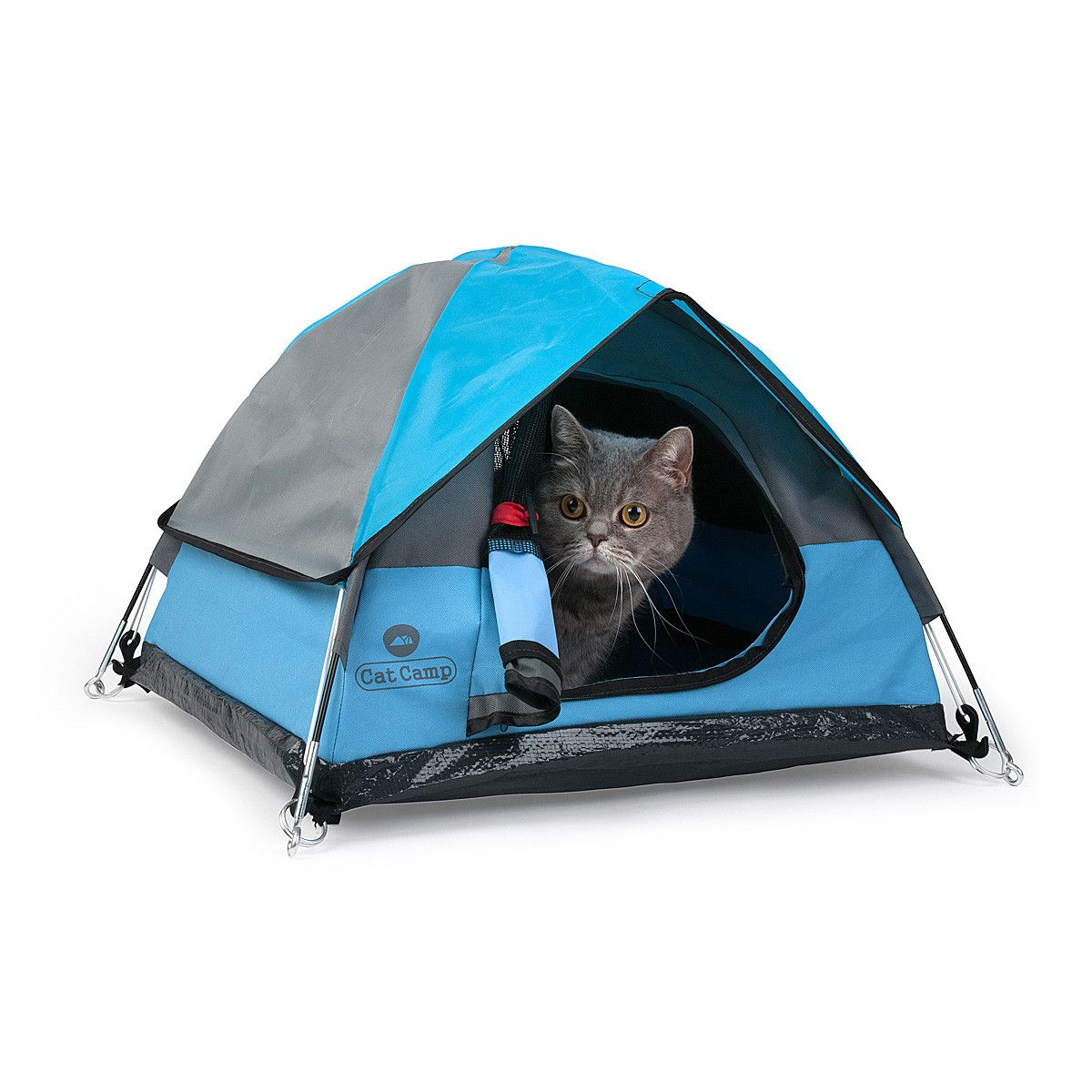 Cat C& - The teeny tiny tent for indoor cats  sc 1 st  Pinterest & Cat Camp - The teeny tiny tent for indoor cats | Tents Camping ...