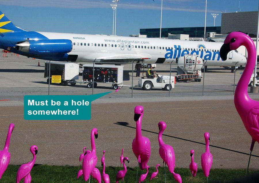 Flamingo Flash Mob SpringfieldBranson National Airport