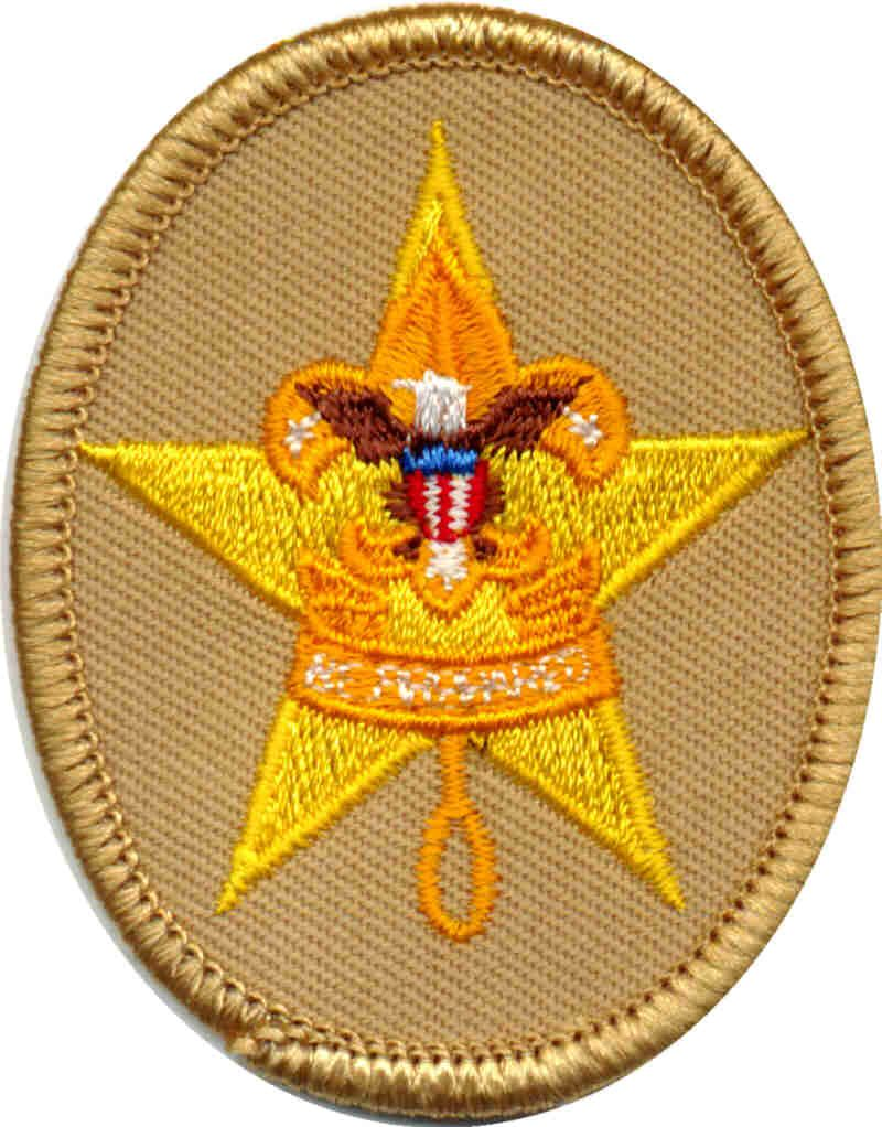 Image result for star rank for bsa