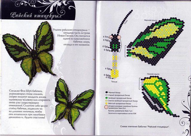 бабочки наталии бушевой