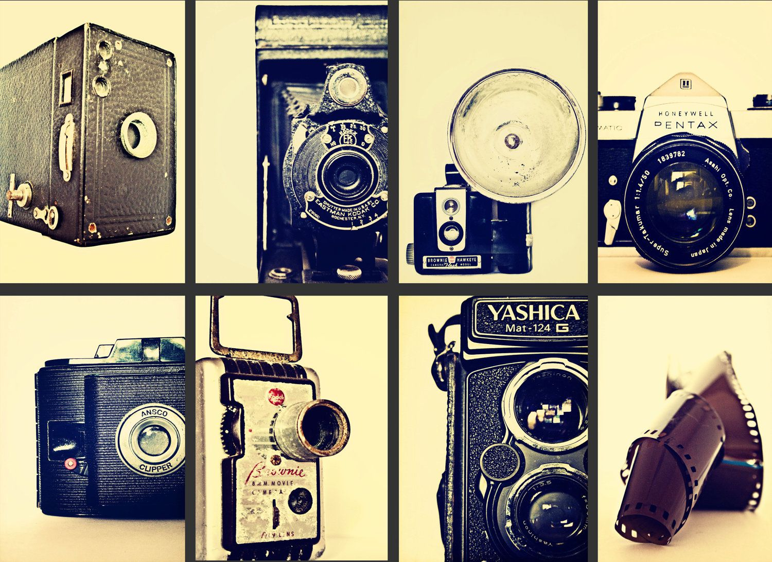 Picture This - Set of 8 eight 8x12 vintage old camera photography ...