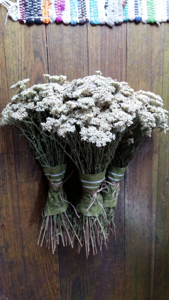 Rustic Dried Flower Bouquet Yarrow Achillea Millefolium Common Magical Wild Herb Bunch Rustic Home Decor Natural Botanical Herbal Medicine Dried Flowers Dried Flower Bouquet Dried Flowers Wedding