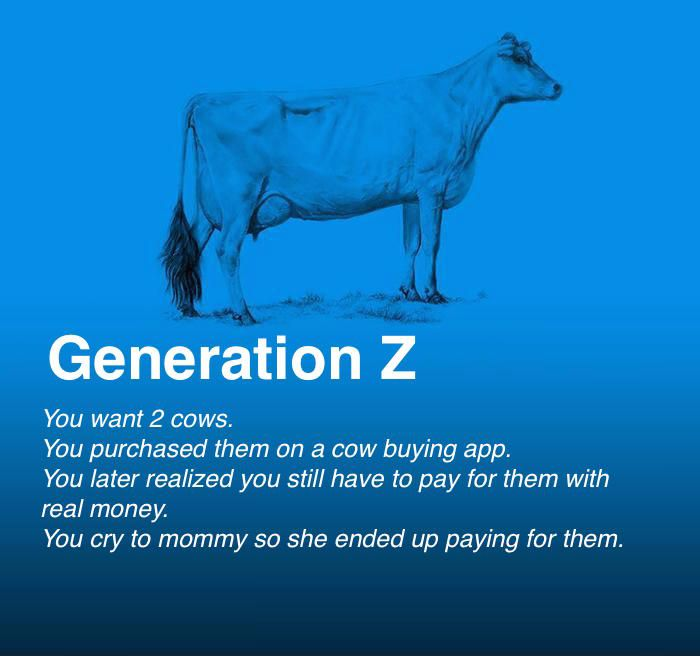 Generation Z You Have Two Cows Funny Memes Funny Pictures