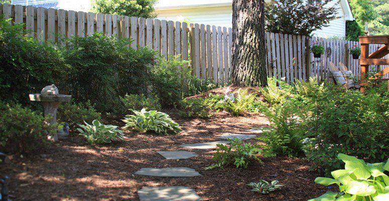 Shade Garden Using Perennials Ferns And Hosts Mcdonald Garden