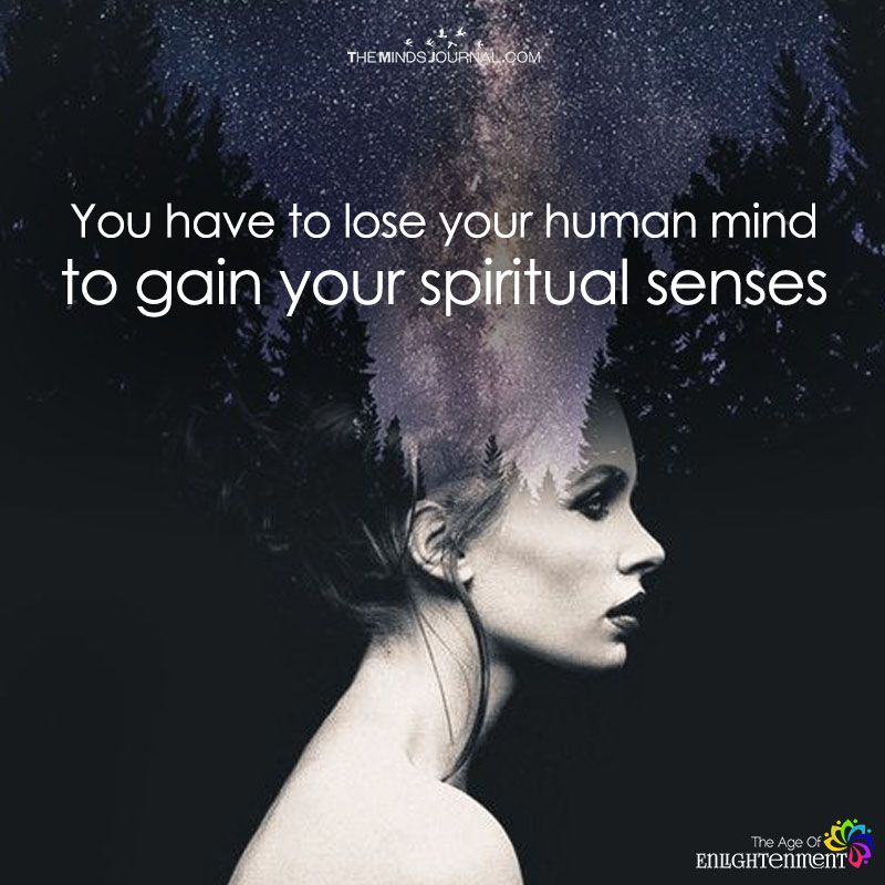 You Have To Lose Your Human Mind | Spiritual Seeker