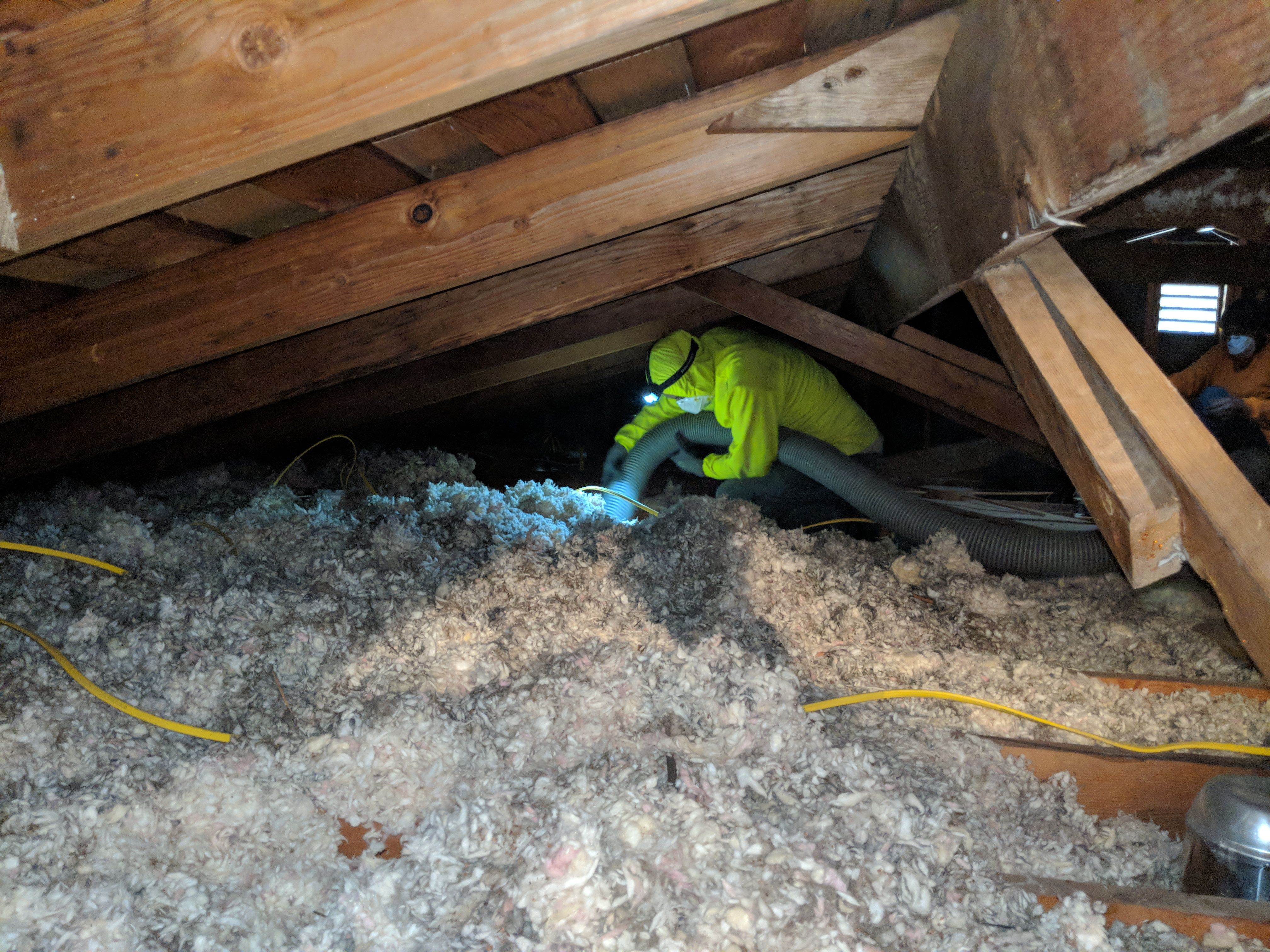 Attic Cleaning Attic Insulation Removal Insulation Removal Blown In Insulation