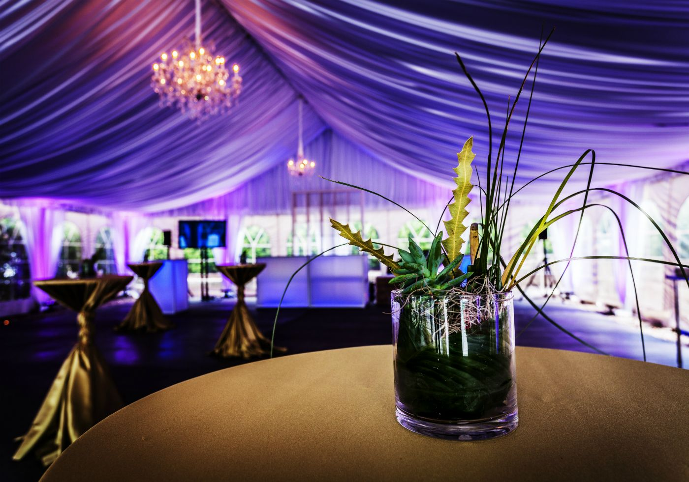 Beautiful Park Pavilion At Royal Park Hotel In Rochester Mi Royal Park Hotel Michigan Wedding Venues Purple And Gold Wedding