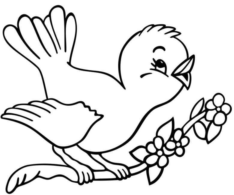 Disegno Da Stampare E Colorare Con Un Uccellino Fiori Disegnati