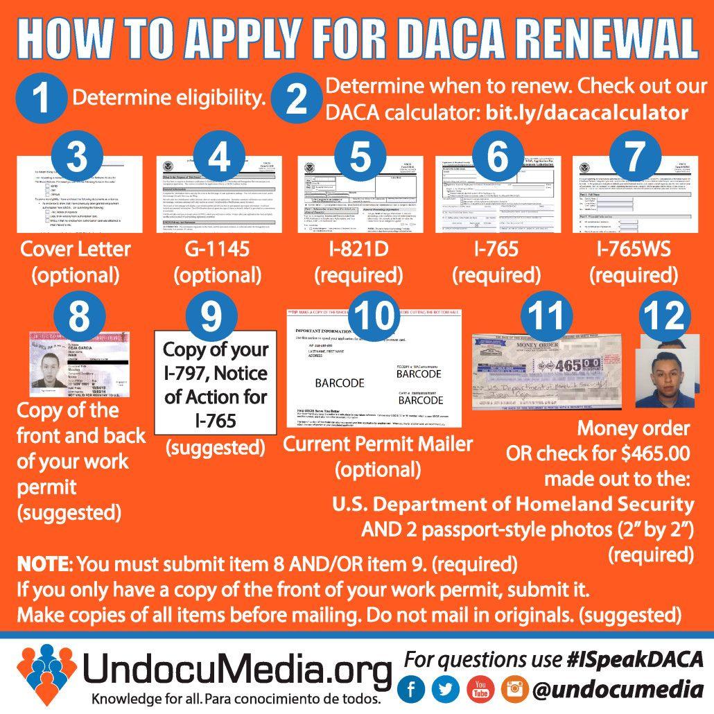 UndocuMedia Infographic DACA Renewal Daca, Renew