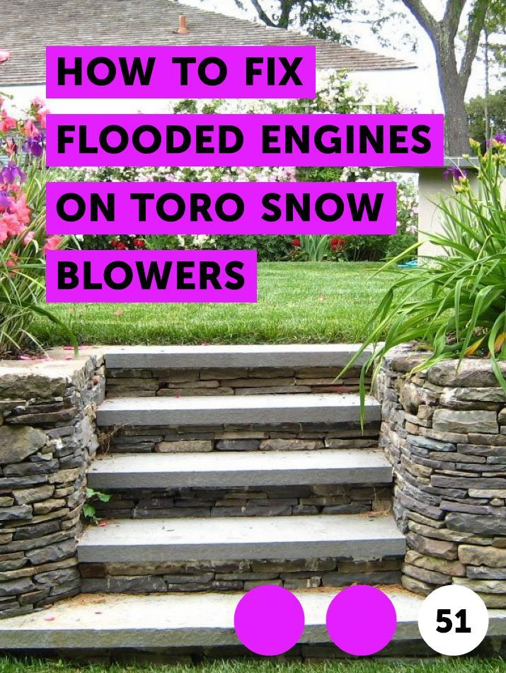 How To Fix Flooded Engines On Toro Snow Blowers Lawn Maintenance Types Of Pine Trees Italian Cypress Trees Weeping Cherry Tree