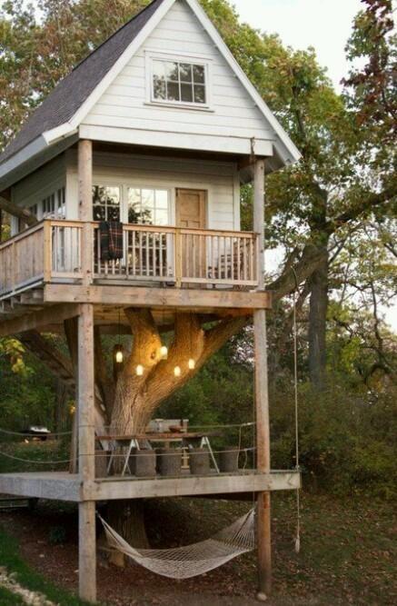 I want a tree house like this!