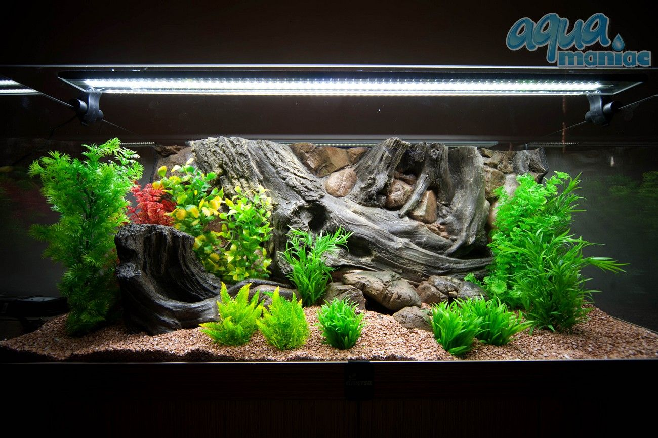 3d Amazon Background With Silicone Plants New Aquarium Setup Idea You Can Set It Up Within 30 M Aquarium Backgrounds Tropical Aquarium Fresh Water Fish Tank