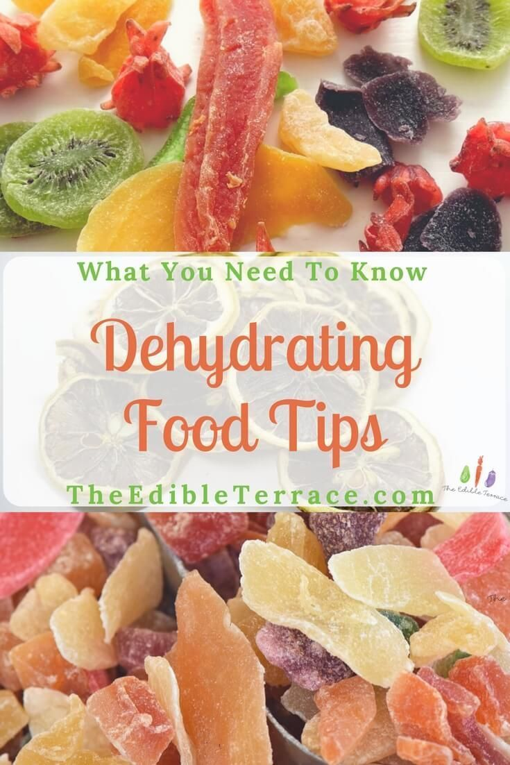 Dehydrating Food Tips What You Need to Know Food