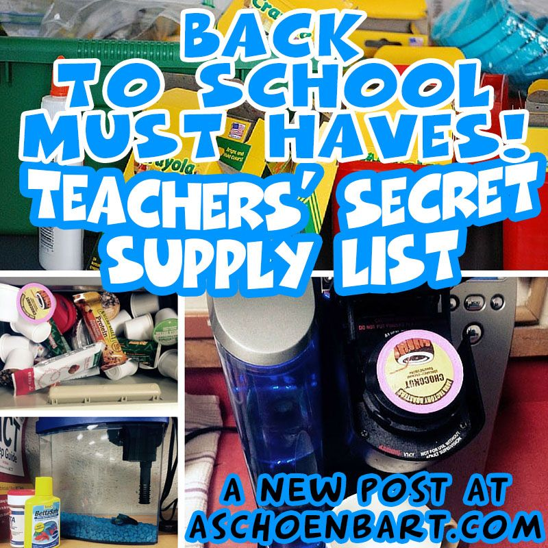 The Schoenblog Back to School Must Haves Teachersu0027 Secret Supply - inventory supply list