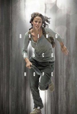 The Maze Runner Poster Em 2020 Filme Maze Runner Serie Maze