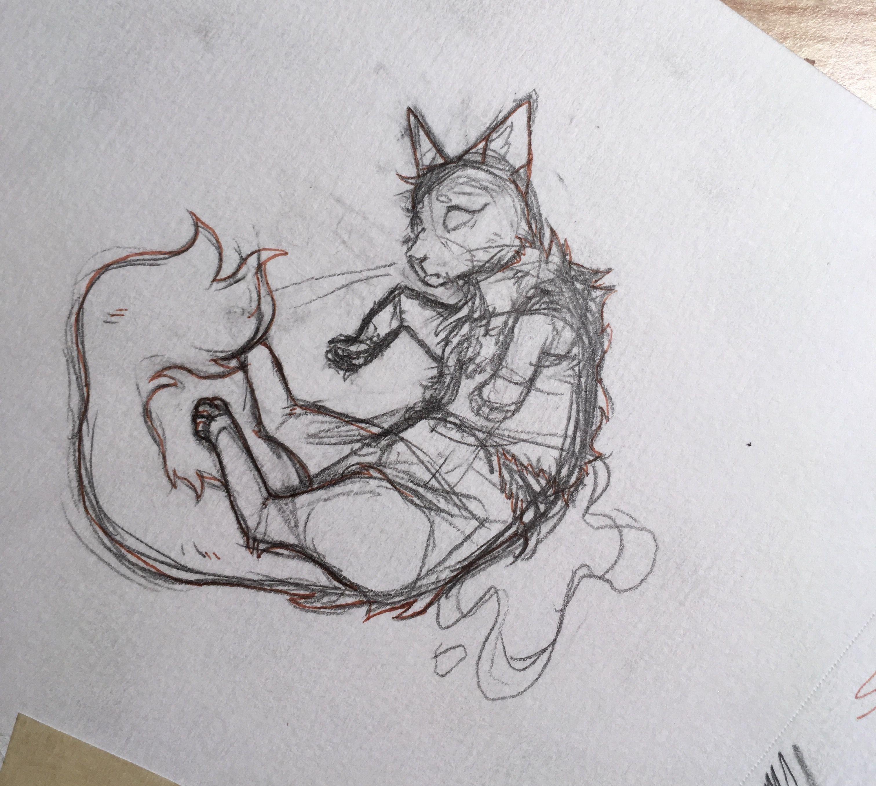Request From Emberlyartz Warrior Cats Art Warrior Cat Drawings