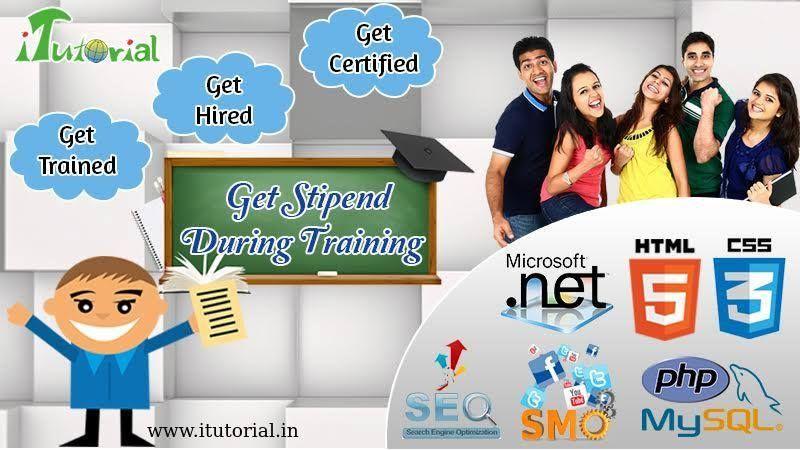 get  stipend during  training    6 month  internship