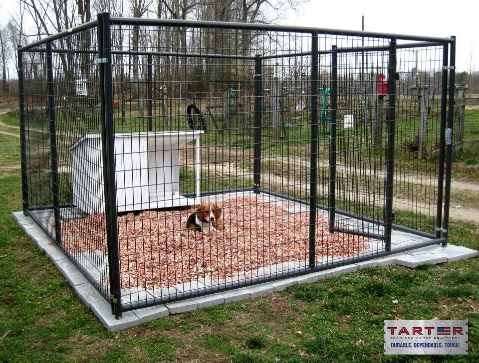 Henry Hiner Is Pleased With His New Tarter 10 X 10 Kennel He Recently Purchased It Also Appears H Building A Dog Kennel Luxury Dog Kennels Dog Kennel Flooring