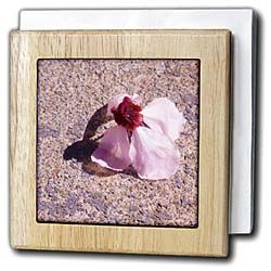 One blossom that has fallen from a tree onto the street in pink Tile Napkin Holder