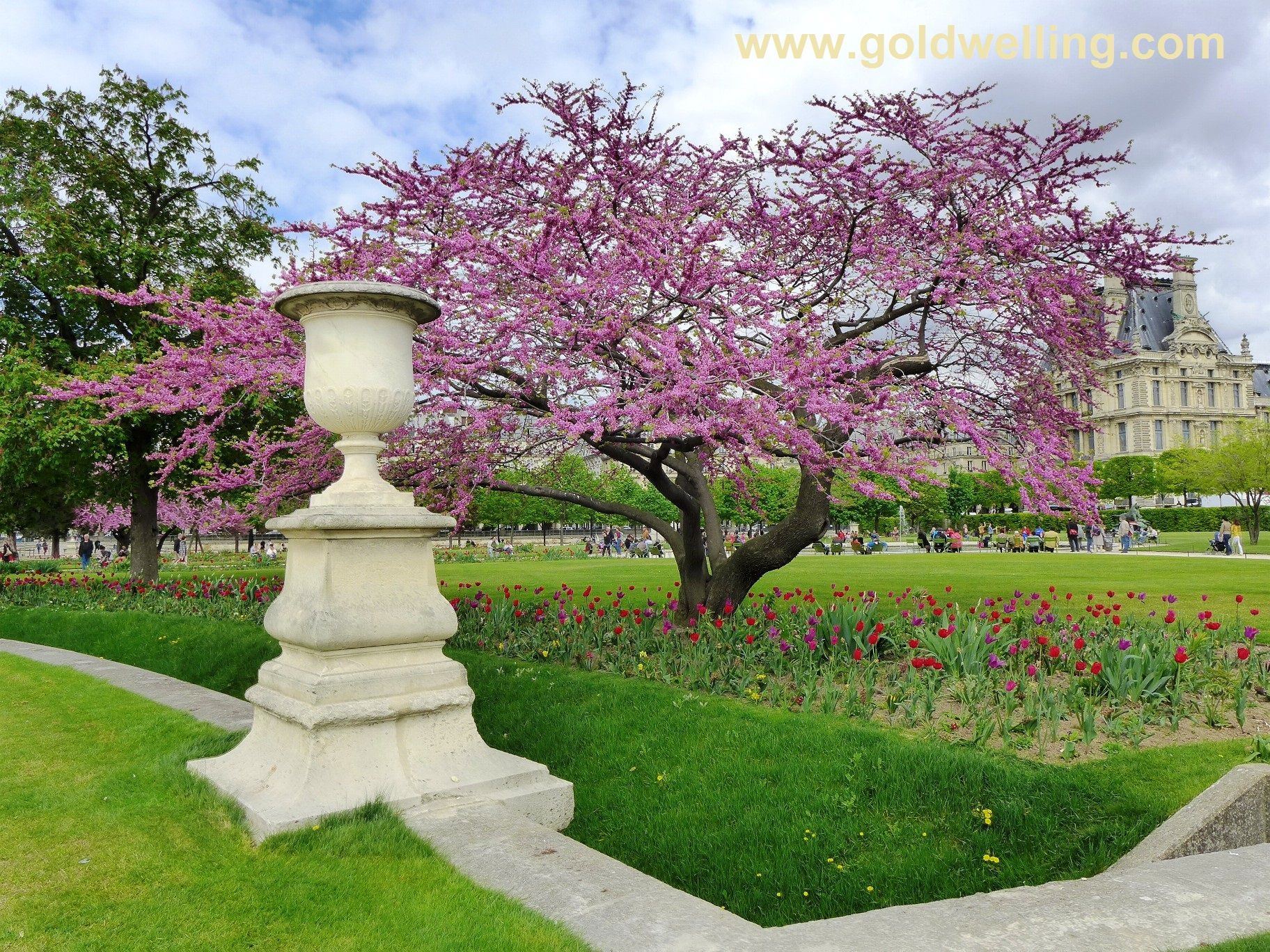 Jardins des Tuileries garden tuileries paris