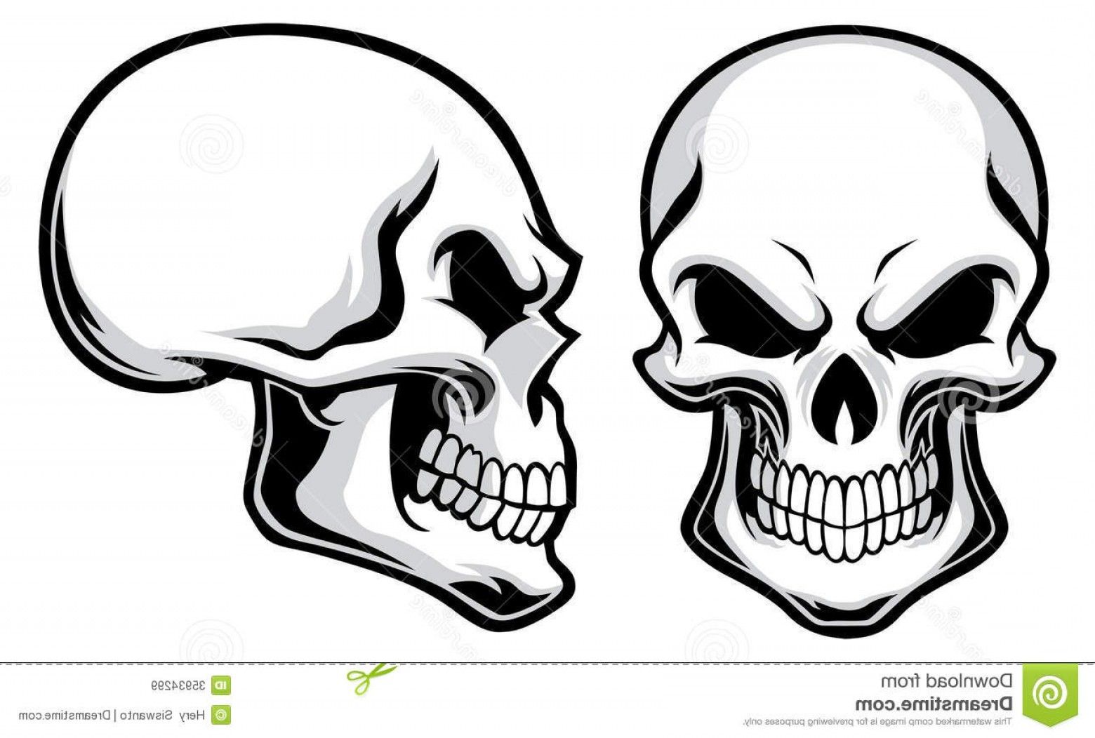 Royalty Free Stock Images Cartoon Skulls Vector Separated