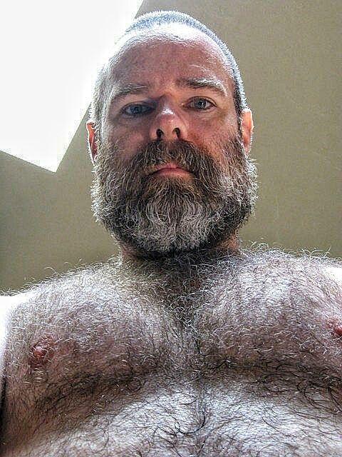 World Of Real Men  Peludo  Hairy Men, Bearded Men, Bear Men-8298