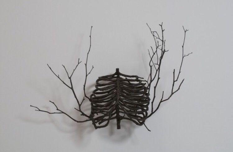 Lungs skeleton
