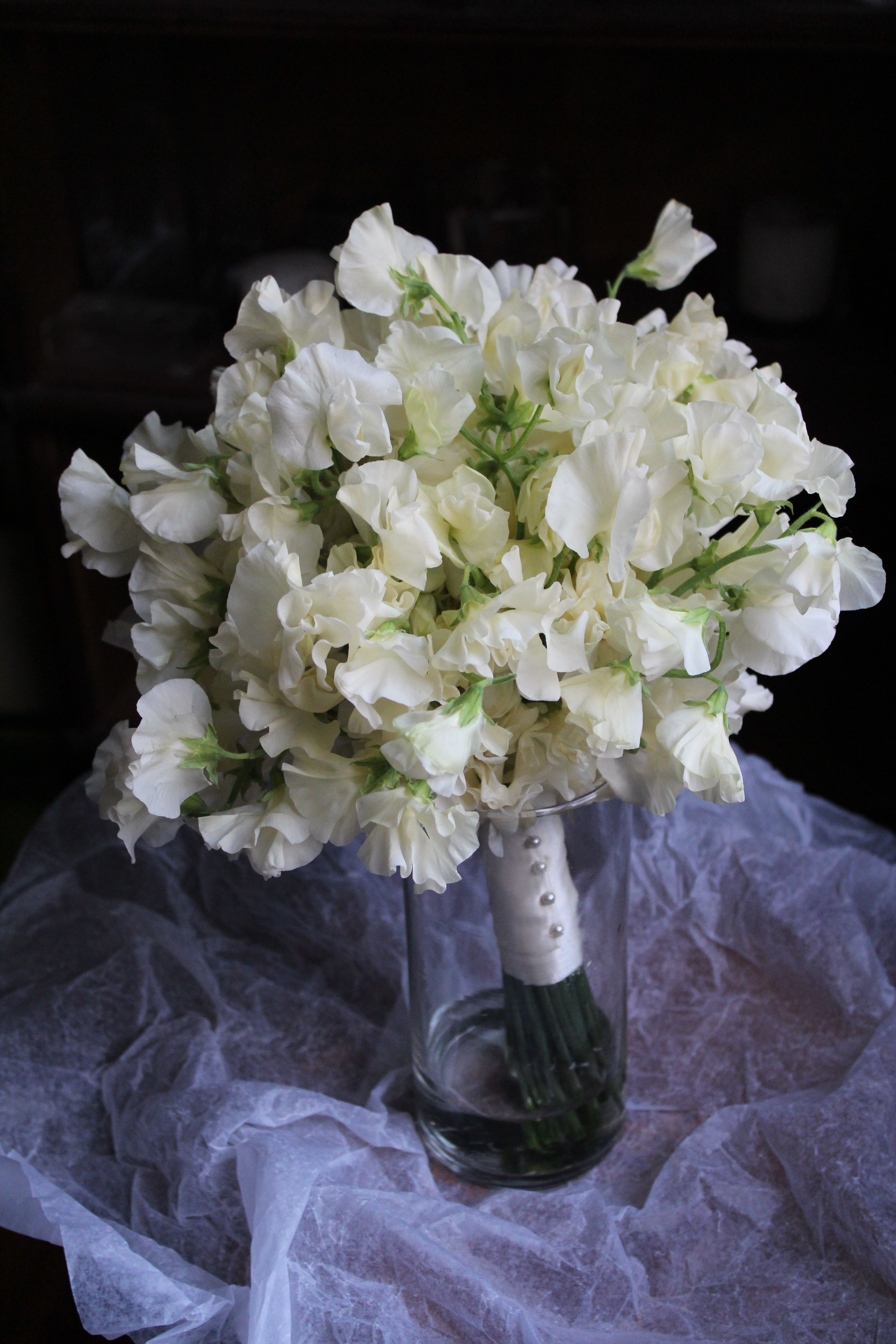 White Sweet Pea Bouquet Trish Holloway Pinterest Sweet Pea
