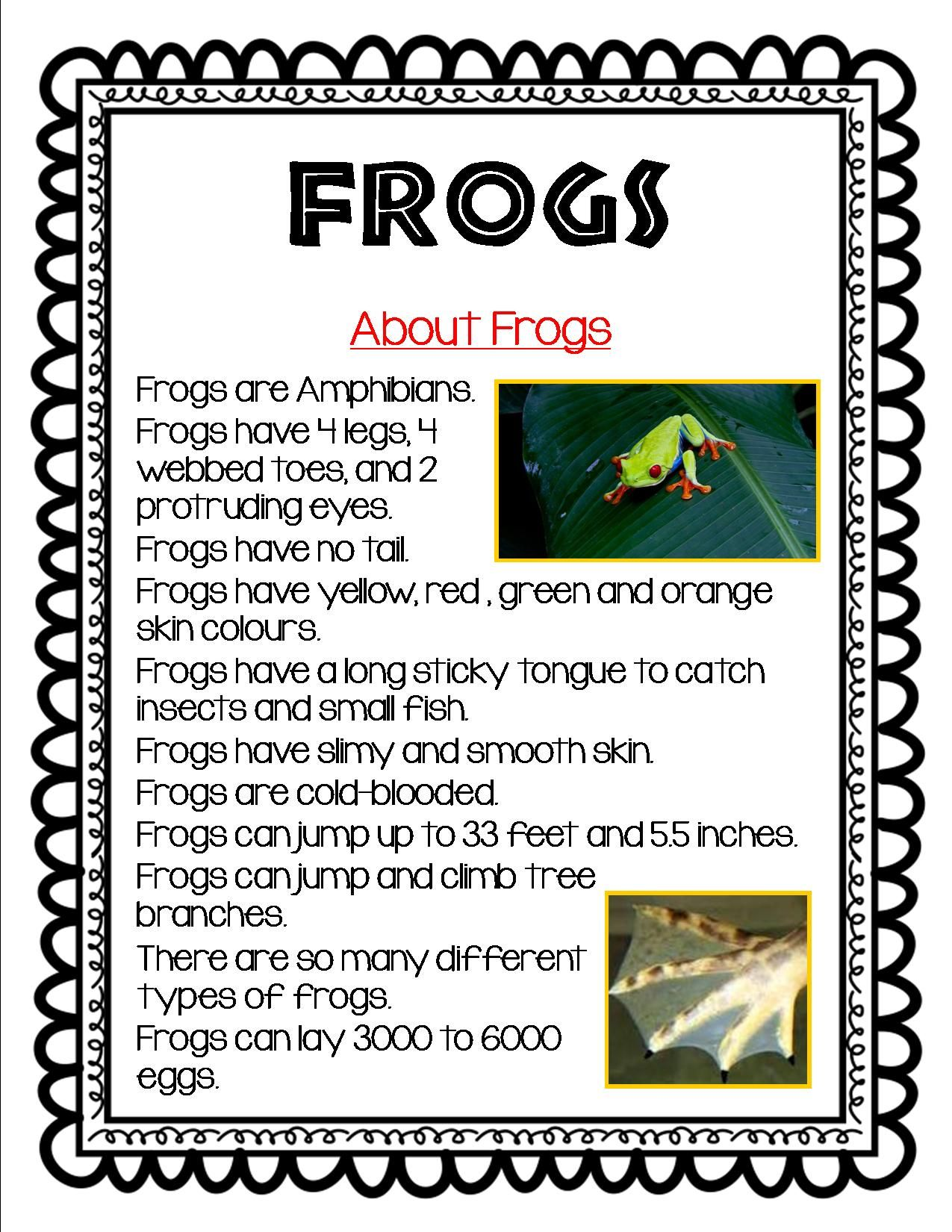 Grade 1 And Grade 2 Students Can Read And Learn About